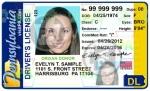Drvr License with Vet Designation
